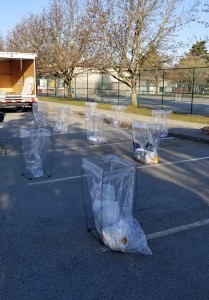 Coronavirus depot setup